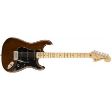 American Special Stratocaster®