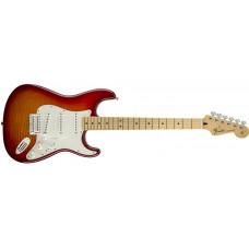 Standard Stratocaster® Plus Top