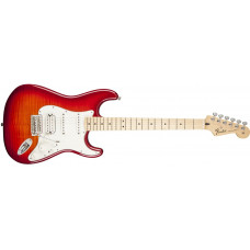 Standard Stratocaster® HSS Plus Top
